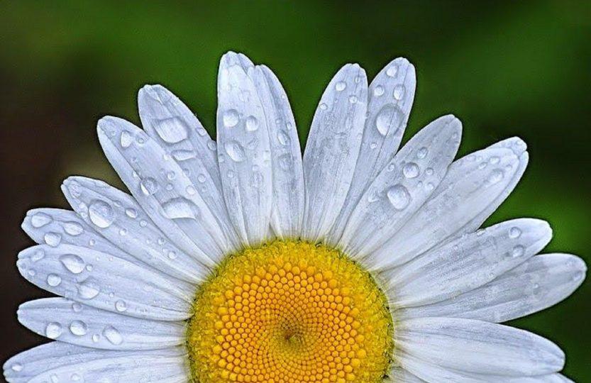 Frumusețea din astă vară. 3 produse beauty testate